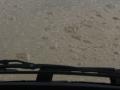 120.Unimog Strandtreffen 11 oktober 2014